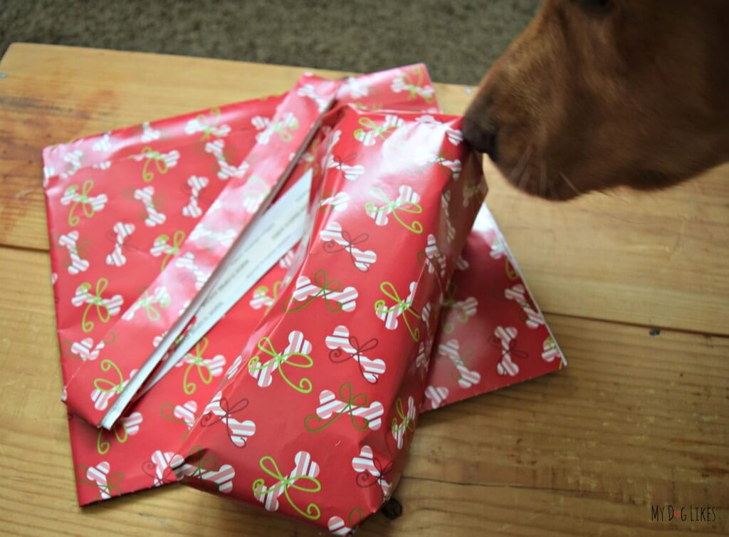 MyDogLikes reviewing Pet Party Printz dog wrapping paper