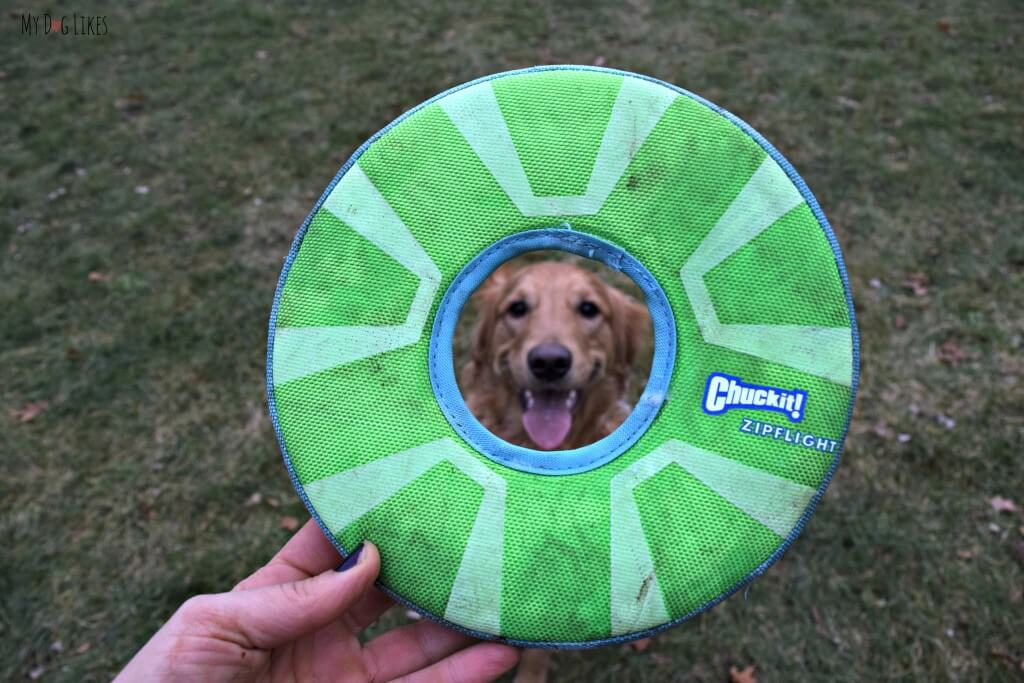 We have always had great experiences with Chuckit Dog Toys, and the Zipflight was no exception! Charlie was obsessed with this dog frisbee!