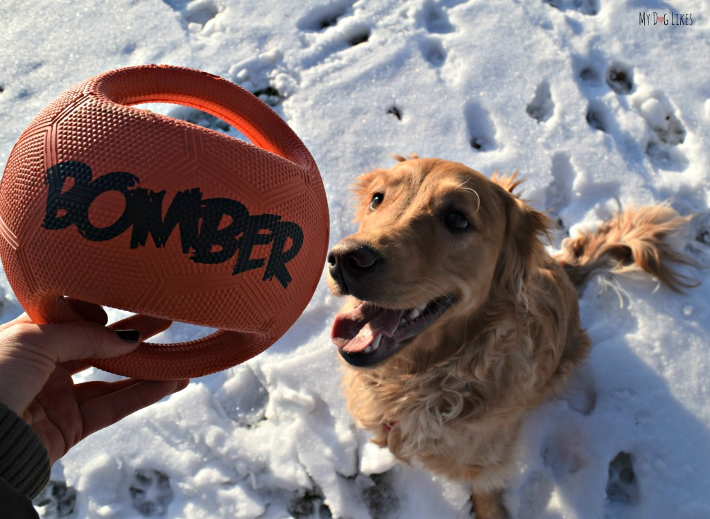 MyDogLikes reviews the Zeus Bomber. This durable dog toy is great for fetch, tug and rough play!