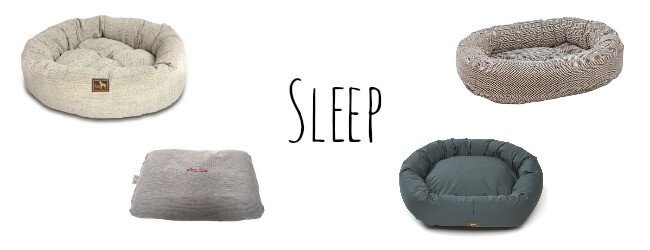 Every dog deserves a comfortable place to sleep! Check out some of our favorites from Amato Pet's dog bed collection.