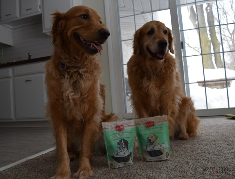 We've got two very happy dogs, knowing that they will soon be sampling some dental health chews from Merrick!