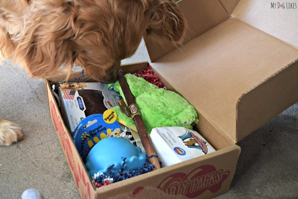 Looking for the best dog subscription box? So is Charlie! Browse MyDogLikes review database before you buy!