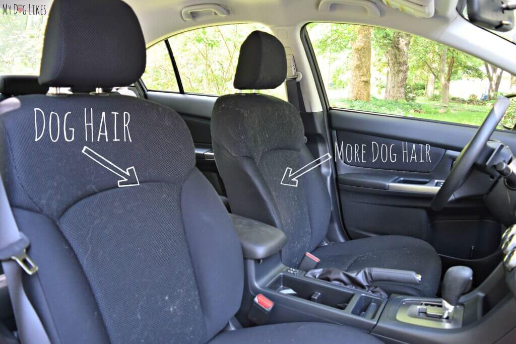 Can you see why we were in the market for some dog car seat covers?