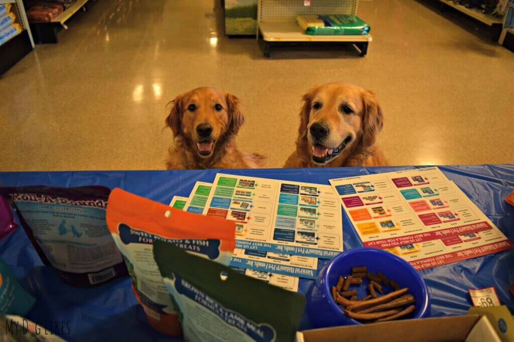 Harley and Charlie looking to gather more information on Natural Balance Dog Food
