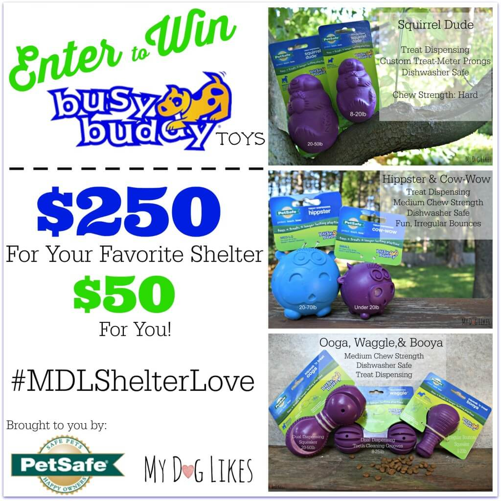 Check out the latest Giveaway from MyDogLikes: Win $250 of toys for your favorite shelter and $50 for yourself!