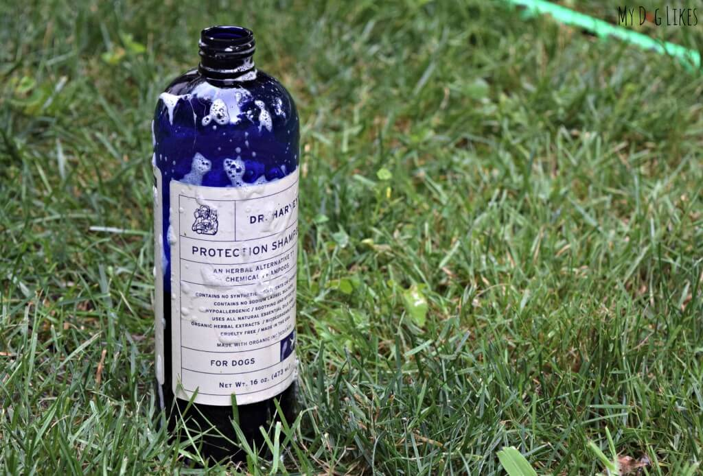 Dr. Harvey's Flea Protection Shampoo is a great all natural way to protect your dogs from unwanted pests.