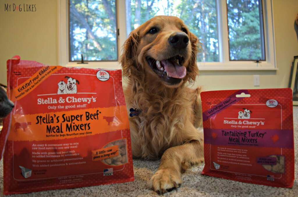 Visit MyDogLikes for our Stella and Chewy's Meal Mixers Review