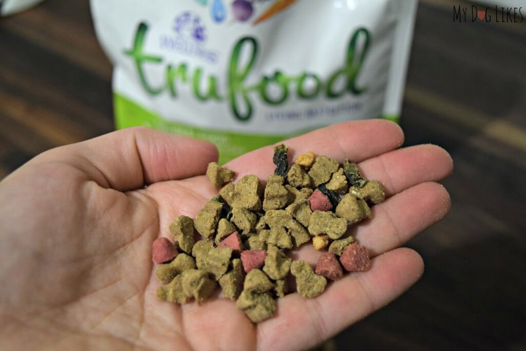 Some dogs may actually need to be hand fed in order for them to get the calories they need.