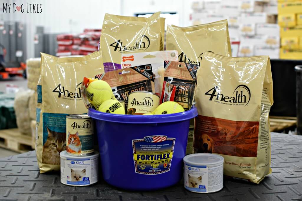 Our donation to Lollypop Farm included plenty of great 4Health food and treats for the shelter pets