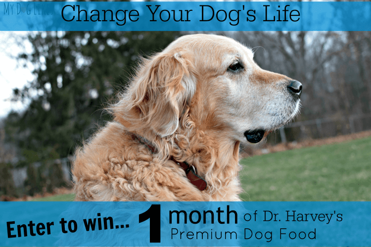 Enter to win a month's supple of Dr. Harvey's Premium Dog Food!