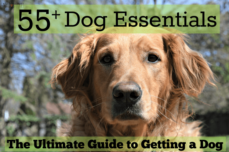 Getting a dog? Browse MyDogLikes Ultimate List of Dog Essentials!