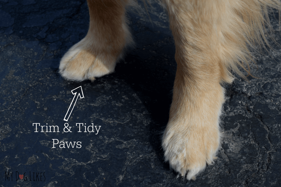 Keeping your dogs paws nice and trim will make application of paw wax much easier and help prevent buildup of snow and ice.