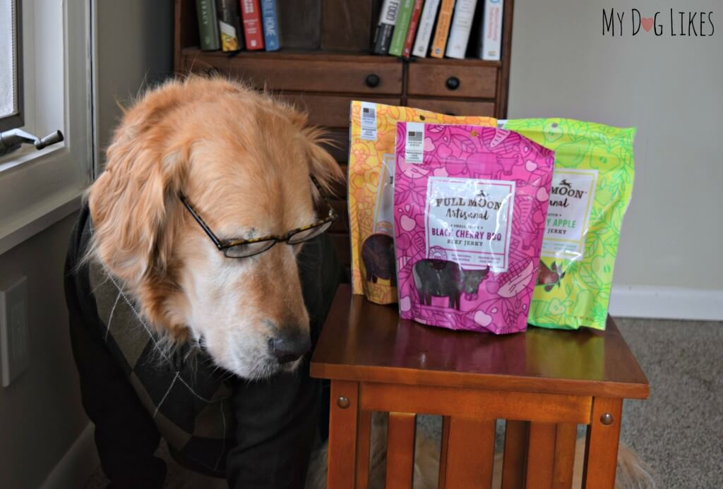 Harley examining the ingredients for our Full Moon Dog Treat Review