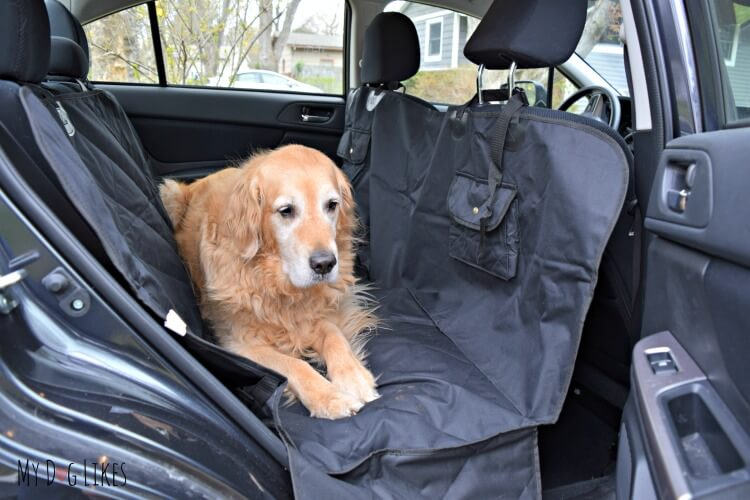 Travelingpaws Pet Car Seat Cover Review from MyDogLikes. Visit our site to see how it stacks up against the competition!