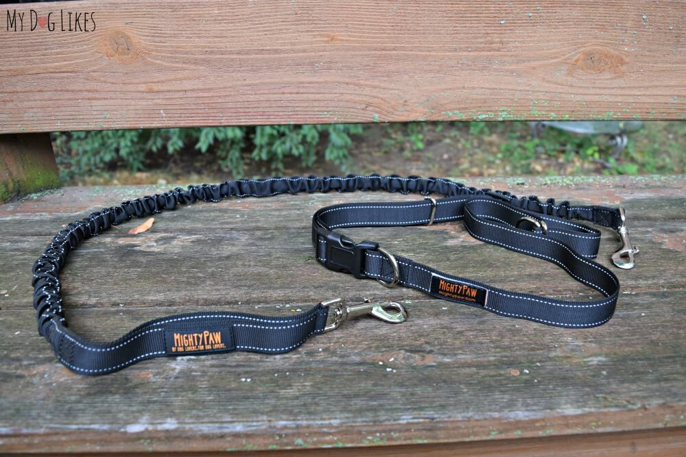 Bungee Dog Leash for walking or running your dog hands-free!