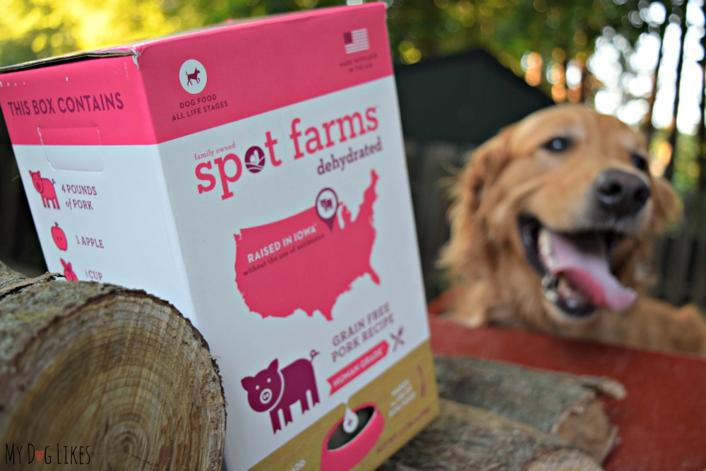 Charlie is excited for the taste test portion of our Spot Farms review.