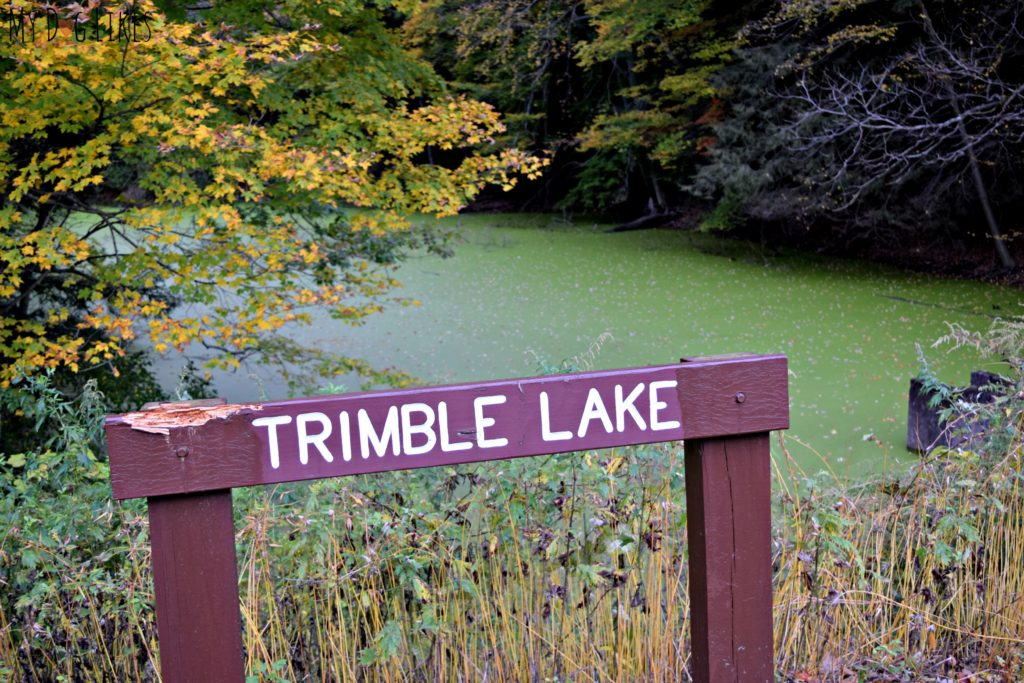 Looking over Trimble Lake from Log Cabin Road at Durand Eastman Park
