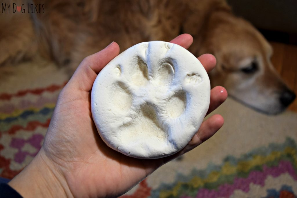 Harley's DIY paw print impression - ready to send back to Hot Sand!