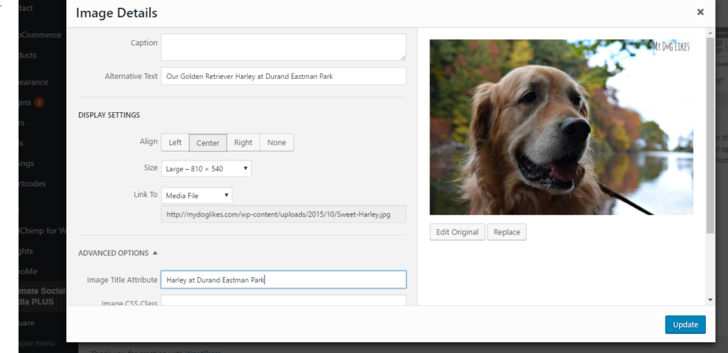 Working on image SEO - filling out the Alt Text and Title Tags