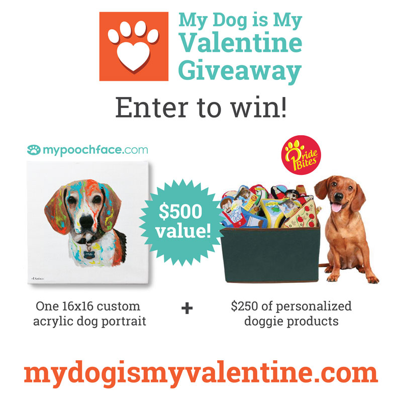 My Dog Is My Valentine Giveaway from PrideBites and MyPoochFace.com