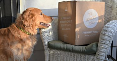 Click here for our official The Farmer's Dog Review