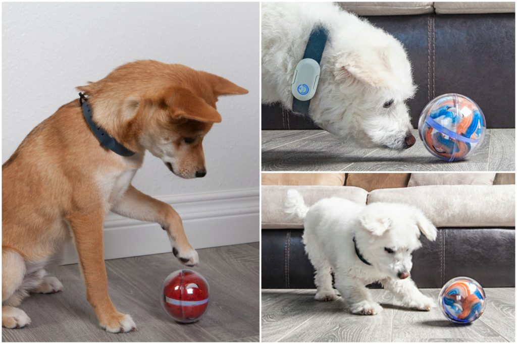 Playing with the Pebby Smart Ball