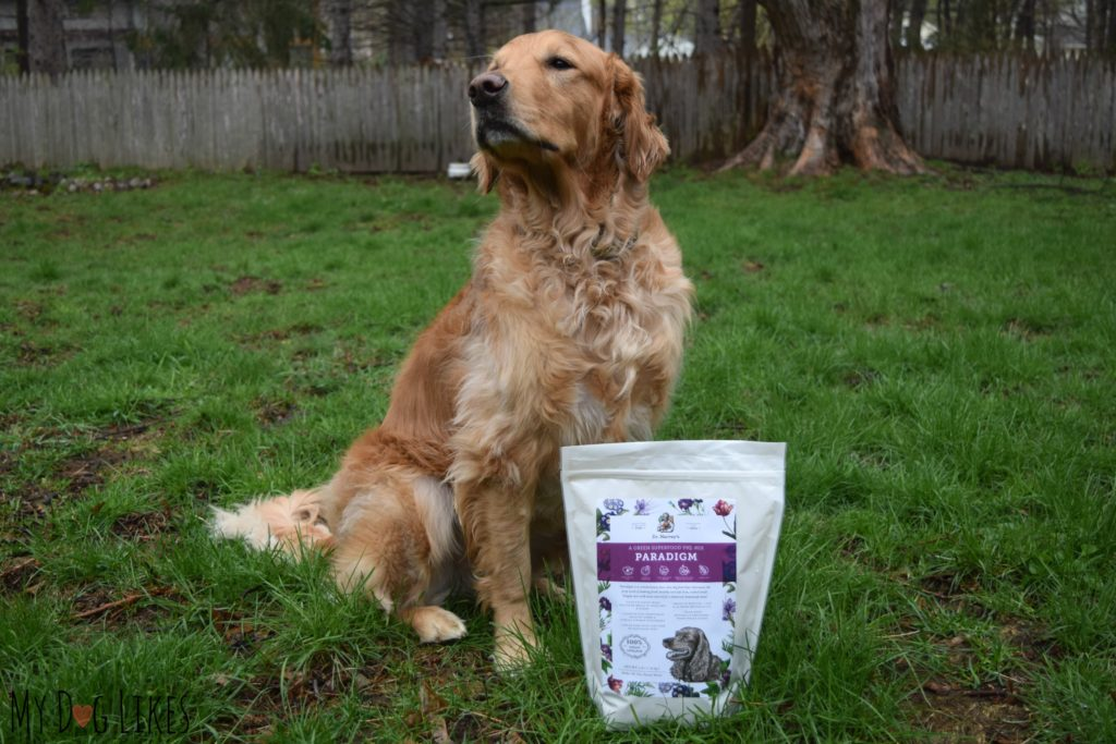 Paradigm is a brand new class of dog food - designed as part of a keto or low-carb diet for dogs.