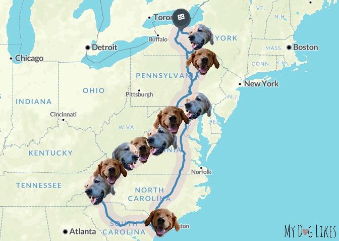MyDogLikes 2017 dog road trip map