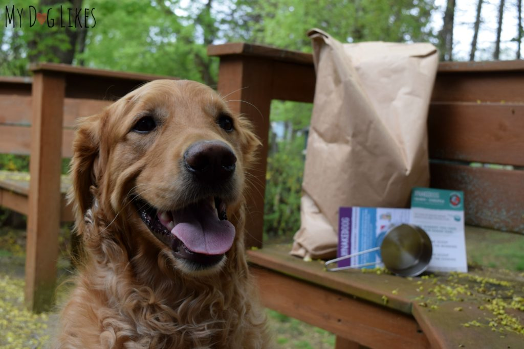 yDogLikes reviews The Naked Dog Box pet food delivery service!