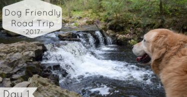 On the first day of this years road trip we visit Rickett's Glen State Park in Northeast Pennsylvania