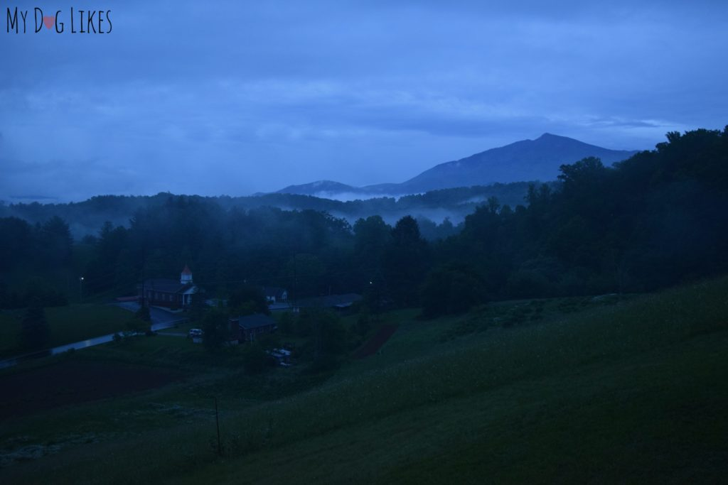 Waking up to fog around Mount Mitchell