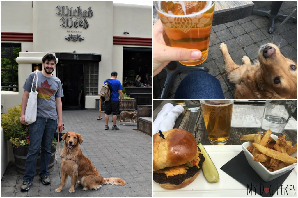 Lunch and a beer at Wicked Weed Brewing - where dogs are welcome!