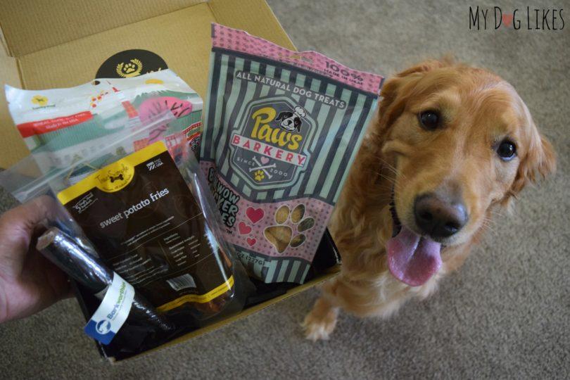 MyDogLikes reviews the Prized Pet Box