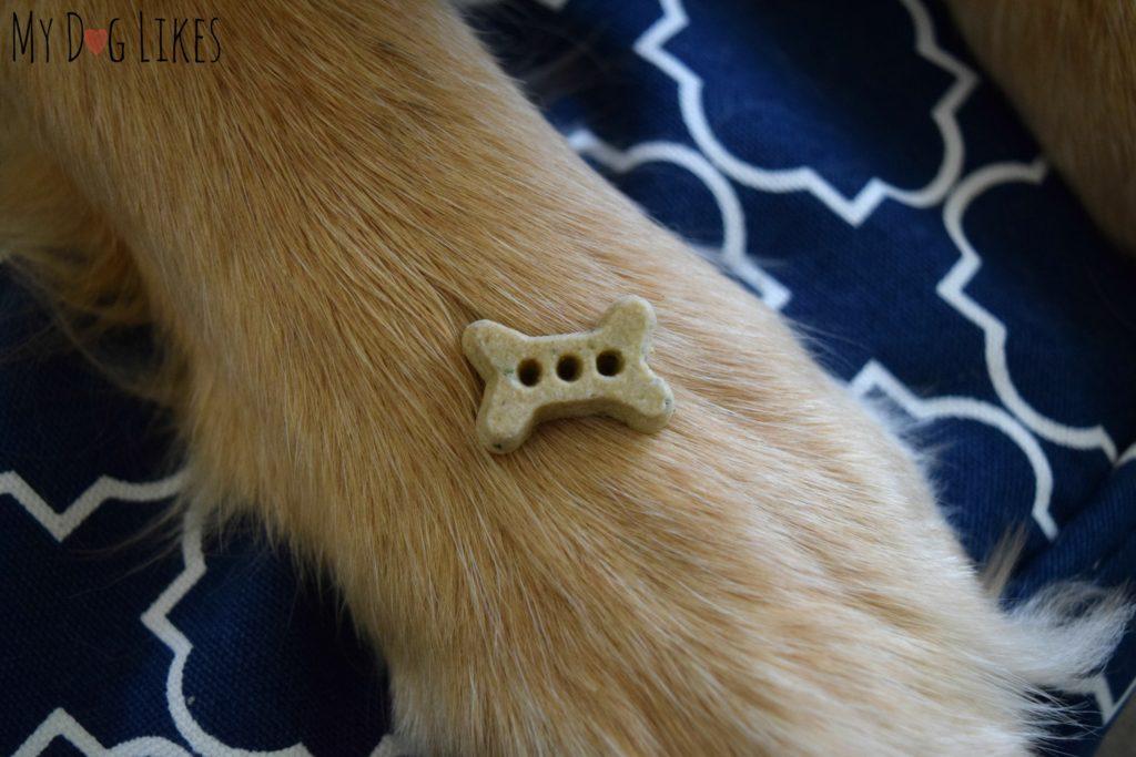Lucky Dog Teriyaki Beef Bites