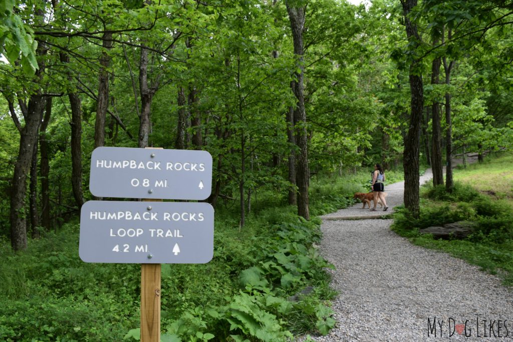 The start of the Humpback Rocks Trail leading out of the parking lot
