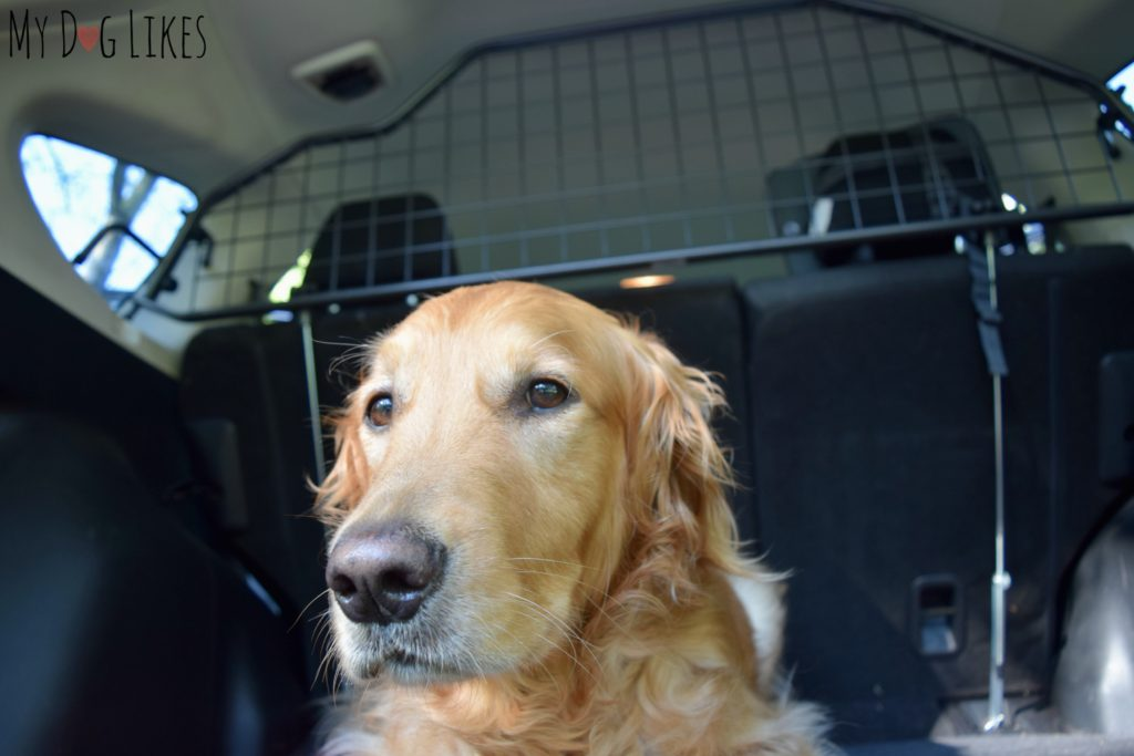 Travall Dog Car Barrier Review