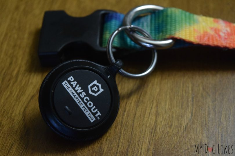 Pawscout Bluetooth Pet Tracker Review