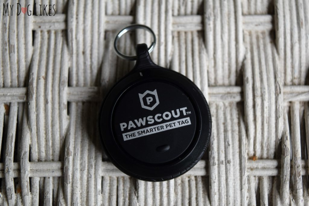MyDogLikes reviews the Pawscout Bluetooth pet tag