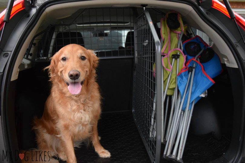 SUV Cargo Divider Review
