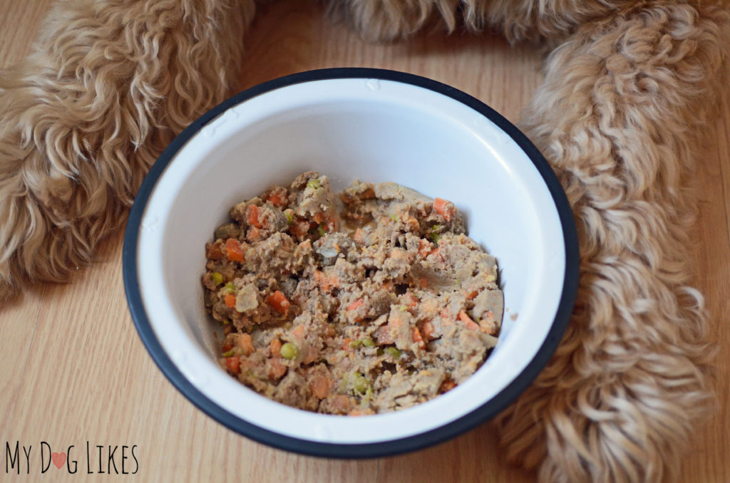 Check out our PetPlate review to learn what sets this dog food delivery service apart!