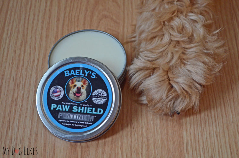 Baely's Paw Shield Review from MyDogLikes.com