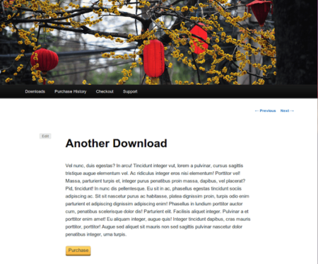 Selz vs Easy Digital Downloads | EDD Product Display