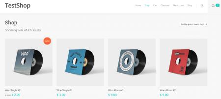 WooCommerce Theme Salient shop page