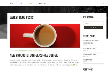 Best WooCommerce themes   Crux review:  blog