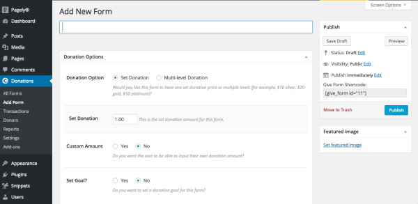 new form donations on WordPress