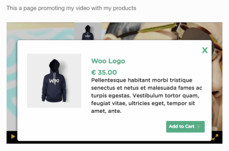 WooCommerce Shoppable Video: product box