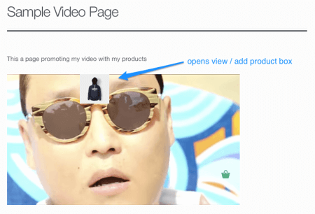 WooCommerce Shoppable Video: product link