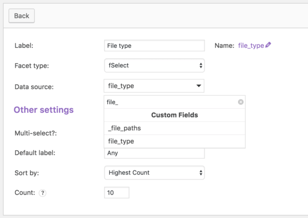 FacetWP Review: custom field facet
