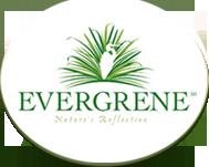 https://secureservercdn.net/50.62.195.83/5bs.9e2.myftpupload.com/wp-content/uploads/2021/09/Evergrene.png