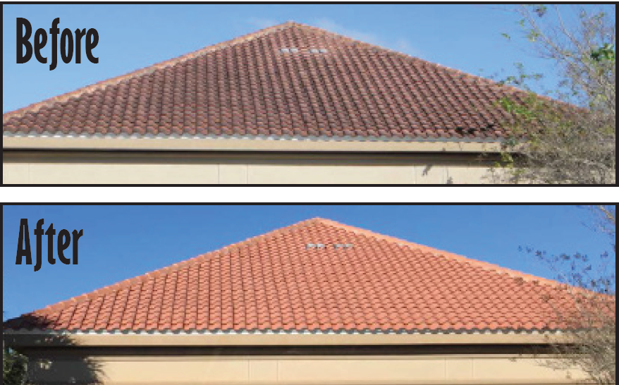 Clay tile low-pressure roof cleaning saint johns's, Florida